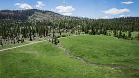 Road through Mountain Meadow in Wyoming Stock Images