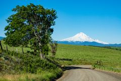 Gravel road heading toward Mount Hood in Oregon. Gravel road heading toward the eastern side of snow-covered Mount Hood, Oregon Royalty Free Stock Photo