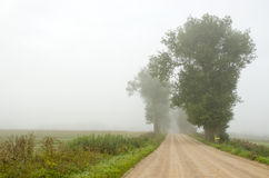 Gravel road in the morning mist Royalty Free Stock Photography