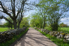 Gravel road with mossy stone walls Royalty Free Stock Photo