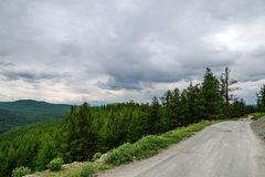 Gravel road in a mountain valley at the top of the Altai Mountains Summer Stock Photo