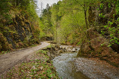 Gravel road in the mountains Stock Images