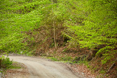 Gravel road in the mountains Stock Image