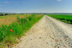 Gravel road no.2 Royalty Free Stock Image