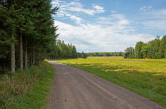 Gravel Road by Open Field Stock Image
