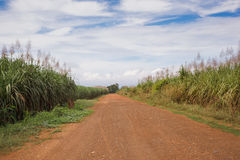 Gravel road in open spaces Royalty Free Stock Photography