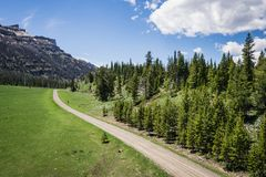 Gravel Road Beside Pine Forest Royalty Free Stock Photography