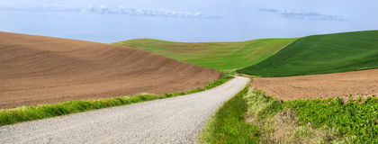Gravel road through rolling wheat fields Stock Photos
