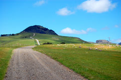 Gravel road rural area New Zealand Royalty Free Stock Image
