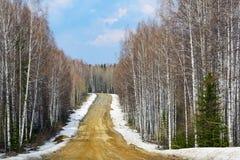Gravel road in the Siberian taiga Stock Image