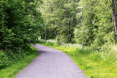 Gravel Road in Swedish Summer Stock Image
