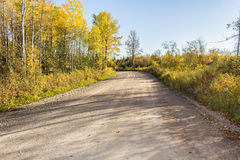 Gravel road. With trees turning color Royalty Free Stock Photos