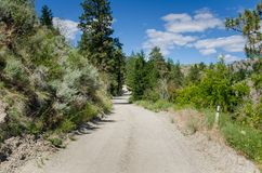 Gravel Road under Blue Sky on a Sunny Day Stock Image