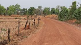 Gravel Road (unpaved road) in rural area at Thailand. Gravel Road or unpaved road in rural area at Thailand stock video