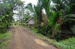 Gravel road in village Papua New Guinea. Gravel road in village of Papua New Guinea Royalty Free Stock Photo
