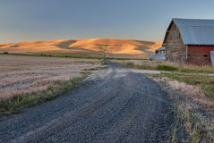 Gravel road with wheat fields and barn sunrise Royalty Free Stock Photography