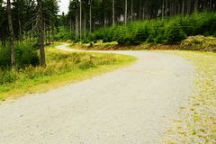 Gravel road winding in spruce forest in the Owl Mountains Landscape Park Sudetes, Poland Stock Image