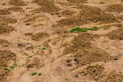 Gravel and sand. Background, top angle view of a pile of gravel and sand, which pitted Stock Photography