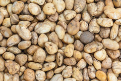 Gravel stone Stock Image