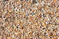 Gravel texture at the beach as background Royalty Free Stock Photography