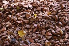 Gravel texture. Gravel background. Stones texture Stock Photography