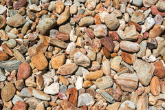 Gravel texture. Texture of pebbles or gravel Stock Photos