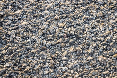 Gravel texture. Stock Photography