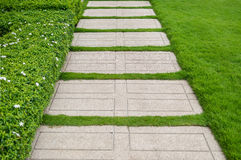 Gravel texture and strip grass Stock Image