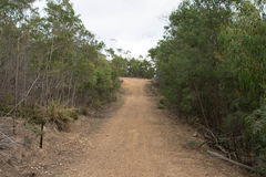 Gravel Track. Walking along an old forestry rd in the suburbs Stock Images