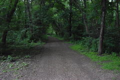 Gravel trail in the woods. Green gravel road trail in the woods leading to new dreams royalty free stock photos
