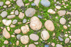 Gravel. Various large and small gravel. The collar covered with moss Royalty Free Stock Photography