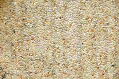 Gravel wall for texture background or backdrop. Gravel wall for texture background backdrop Stock Image
