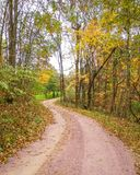Gravel Road in Fall with Yellow Trees royalty free stock image