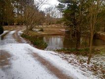 Gravelez la route couverte dans la neige à côté d'un étang Photo libre de droits