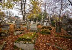 Graven bij de begraafplaats stock foto
