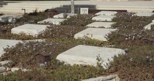 Graven in een militaire begraafplaats in Israël stock videobeelden