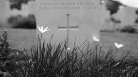 graven kriger second världen Arkivbild