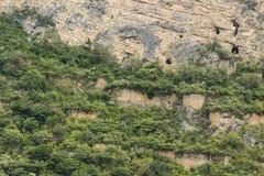 Graven op een bergmuur stock afbeeldingen