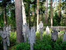 GRAVERBOARDS KRIKSTAS W NIDA ` S cmentarzu obrazy stock
