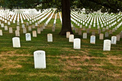 Graves at Arlington national Stock Photography