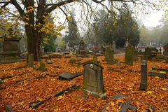 Graves with autumn leaves Stock Photo