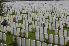 Graves of British and Other Commonwealth WWI Soldiers. Graves of courageous Commonwealth soldiers who were killed in the Ypres Salient during WWI Royalty Free Stock Images
