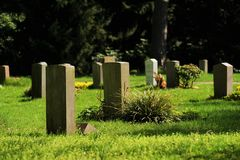 Graves on a cemetery. Graves in a cemetery in spring Royalty Free Stock Image