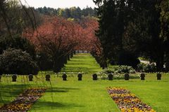 Graves in a cemetery. In spring Stock Photography
