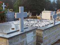 Graves and Crosses in Cemetry Stock Photo