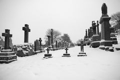 Graves with crosses Stock Image