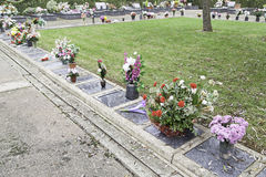 Graves with flowers Royalty Free Stock Images