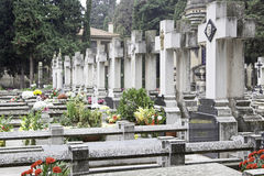 Graves with flowers Stock Images