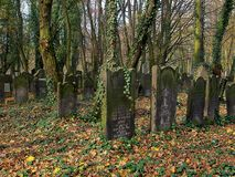 The graves of the forest are masked .. Jewish tombs among trees on the historic Jewish cemetery in Lodz Stock Photo