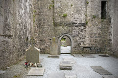 Graves in Irish abbey ruins. Graves and headstones in medieval ruins of Crocomroe Abbey.  County Clare, Ireland Stock Photography